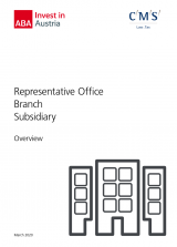 Overview: Representative Office, Branch, Subsidiary